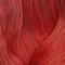 HD RV Red Violet