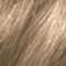 10.11AA Intense Platinum Ash Blonde