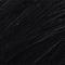 #1 Black Licorice