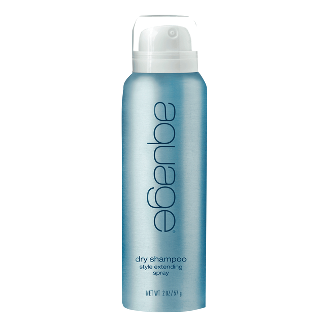 Dry Shampoo Style Extending Spray