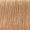 12-481 Special Blonde Beige Red Cendre