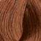 7-764 Medium Blonde Copper Chocolate Beige