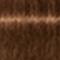 6-460 Dark Blonde Beige