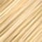 10G Lightest Golden Blonde