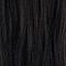 2N Darkest Natural Brown