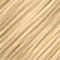 10Gn/12G2 Lightest Gold Neutral Blonde