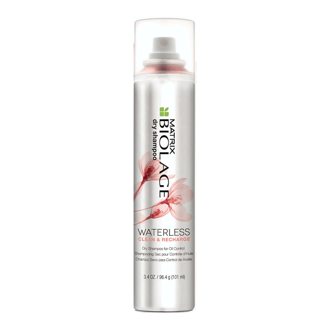 Dry Shampoo - Clean and Recharge