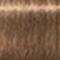 8-46 Light Blonde Beige Chocolate