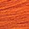 9AT Warm Toner Apricot