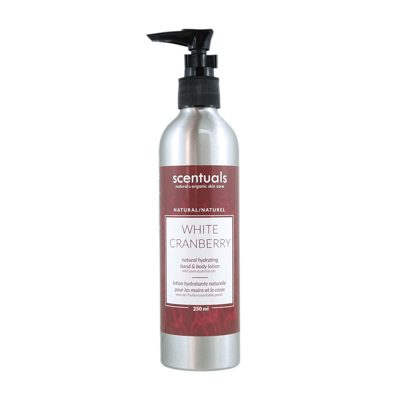 White Cranberry Hand & Body Lotion