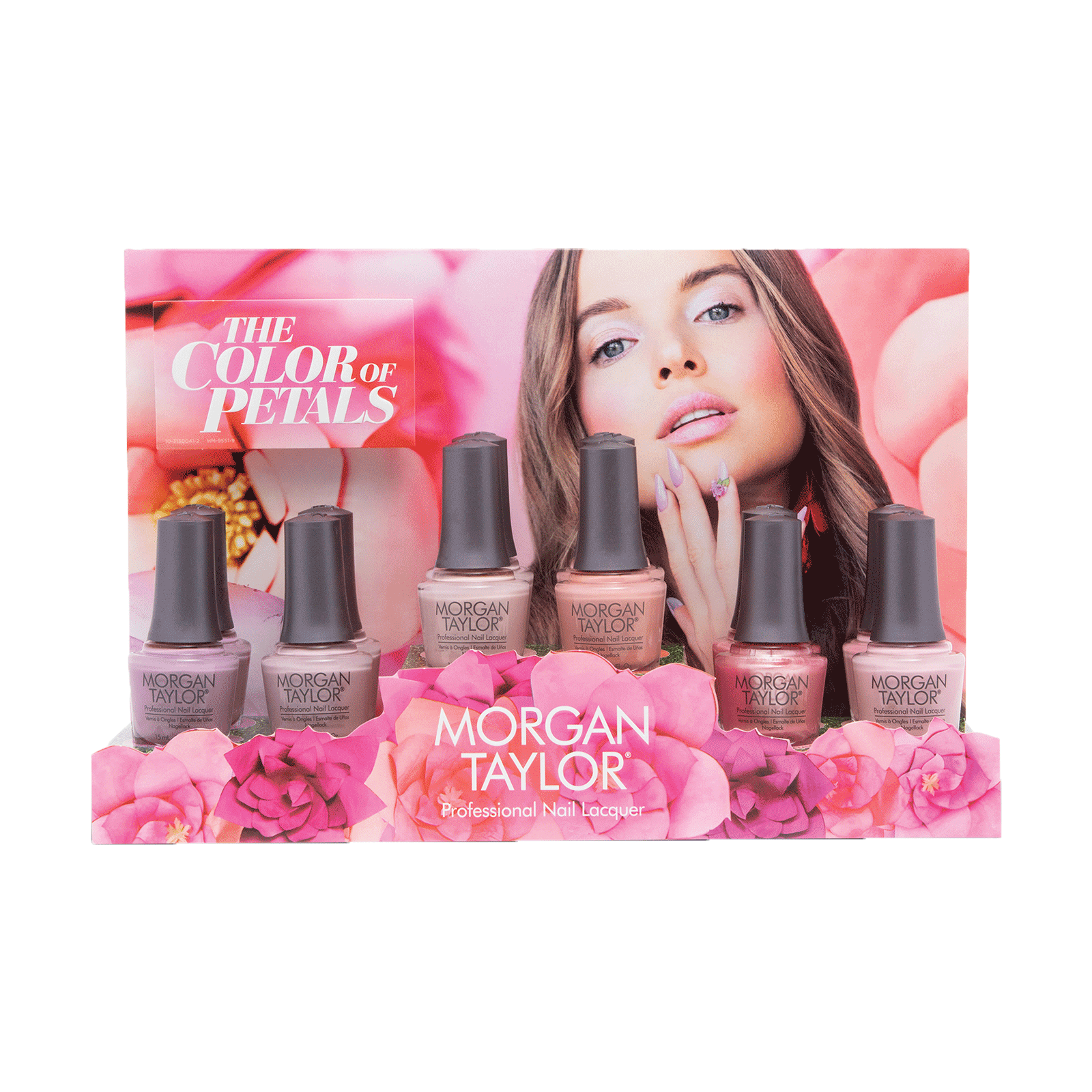 The Color of Petals - 12 Piece Display