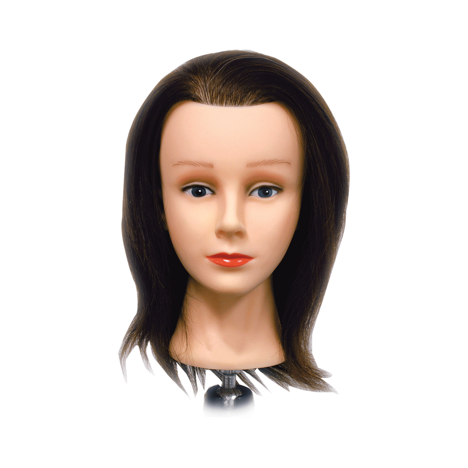 Celebrity Bridgette Budget Mannequin Head